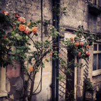 Cotswold stone and flowers